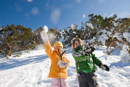 Gippsland, Αυστραλία: Mt Baw Baw Ski Season
