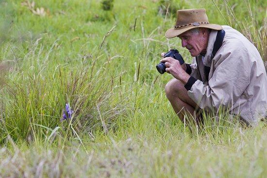 Nyika National Park照片