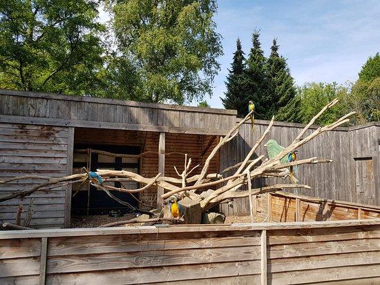 Zoo Veldhoven照片