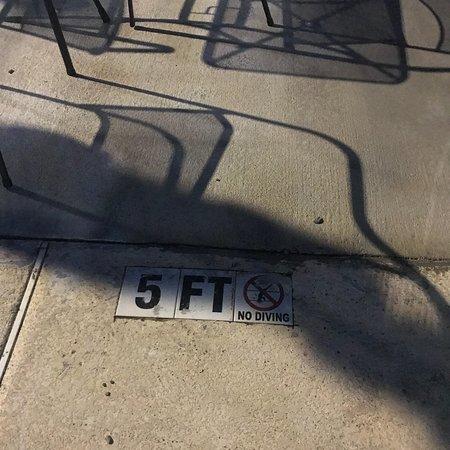 Manning, SC: Outside