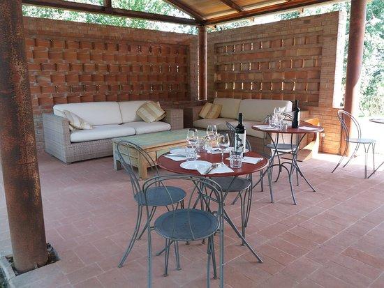 Castiglione del Lago, Italia: Degustazione a bordo piscina