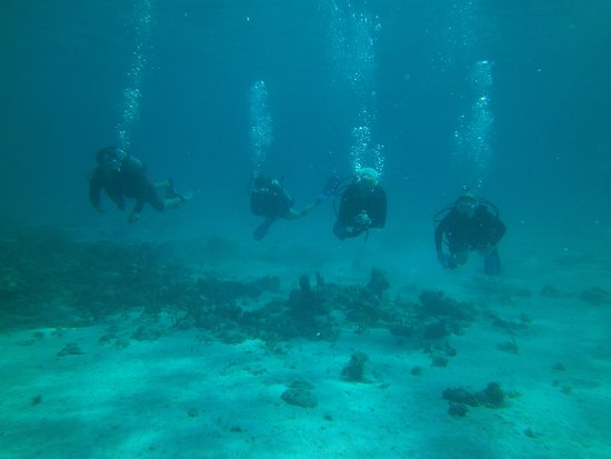 Low Key Watersports: Diving at Mingo Cay