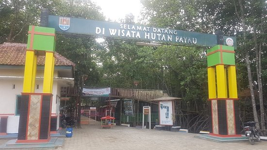 Cilacap, Индонезия: Welcome to Hutan Payau