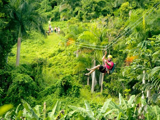 Luquillo, Puerto Rico: Feel the buzz in our high-tech ziplines while enjoying birds-eye views of the rainforest!