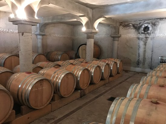 La Croix-Valmer, France: Cellar at Chateau De Chausse