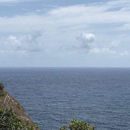 Pointe de la Grande Vigie: photo1.jpg