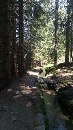 Meran Waalrunde: Waalweg natur puur und romantisch
