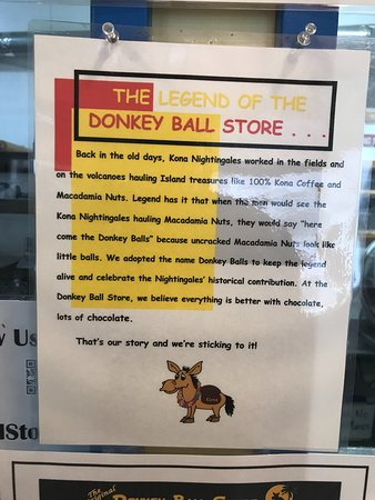 The Original Donkey Ball Store: About the store