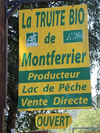 Montferrier照片