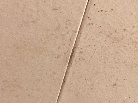Badkamer Plafond Schimmel : Zwarte schimmel in de badkamer picture of kit wat motel restaurant