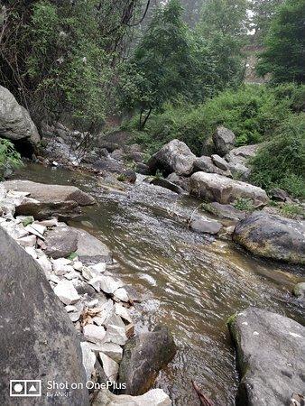 Jibhi, Индия: IMG_20180615_150525_large.jpg