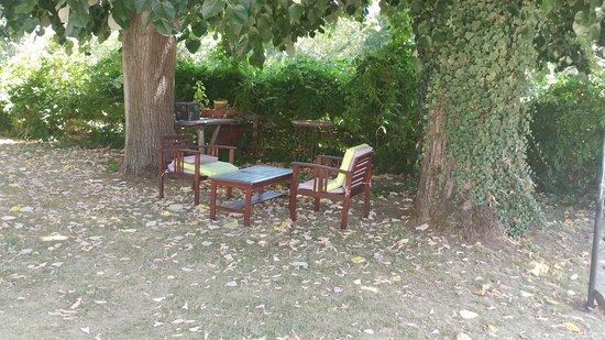 Bannay, France : petit coin tranquille pour boire un verre
