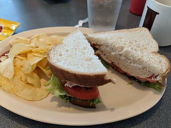 Ocklawaha, Φλόριντα: Dam Diner
