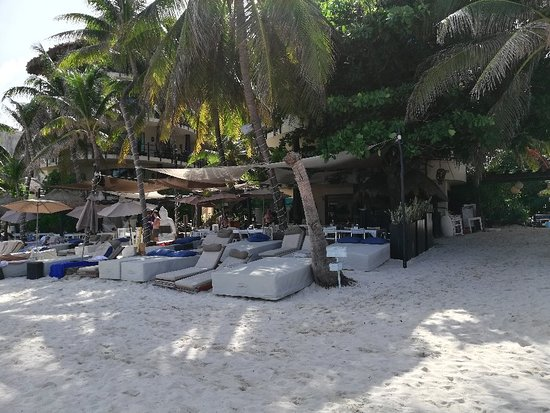 Indigo Beach: IMG_20180802_155537_large.jpg