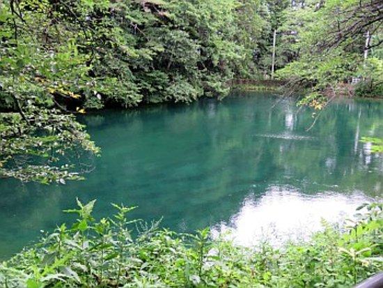 Shiojiri, Япония: 平出の泉