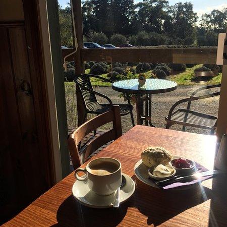Wandin North, Australia: love this cafe