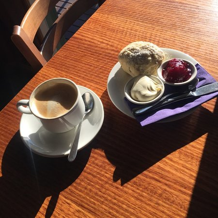 Wandin North, Australia: beautiful coffee and scone