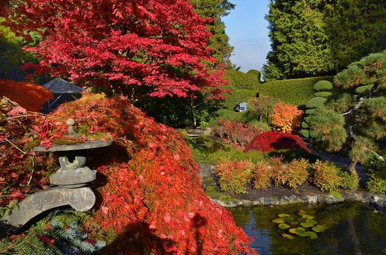 Butchart Gardens in the Fall, Shuttle with commentary from downtown...