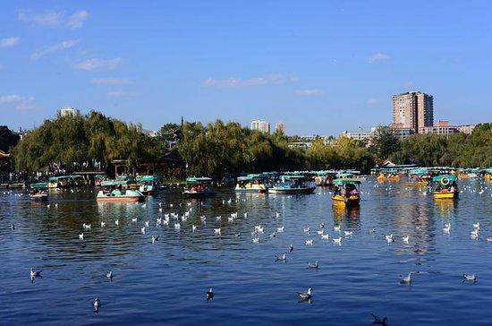 1-Day Panorama Tour in  Kunming