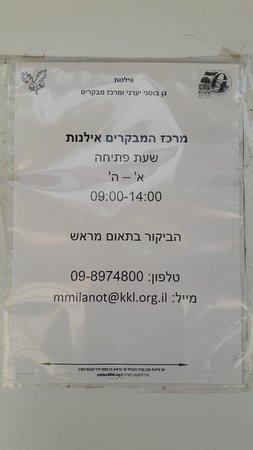 קדימה, ישראל: Ilanot Forest