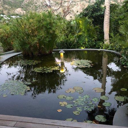 Grande Saline, Άγιος Βαρθολομαίος: photo4.jpg