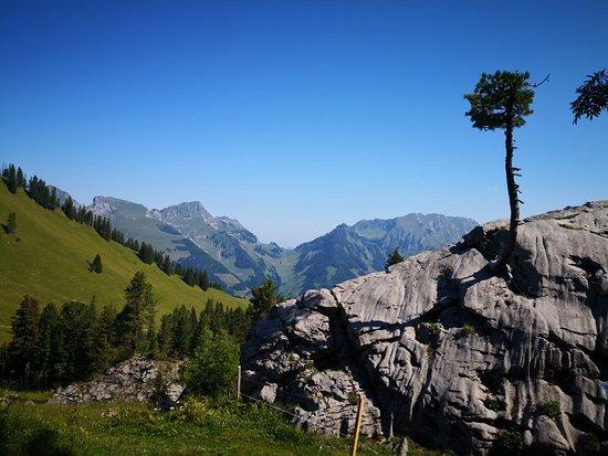 Jaun, Swiss: Chalet du Soldat (regiment)