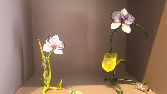 Anima Creativa Glass Lab