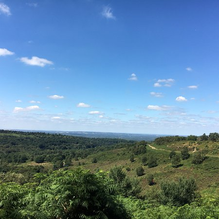 Hindhead Commons and the Devil's Punch Bowl: photo5.jpg