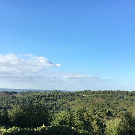 Hindhead Commons and the Devil's Punch Bowl: photo6.jpg