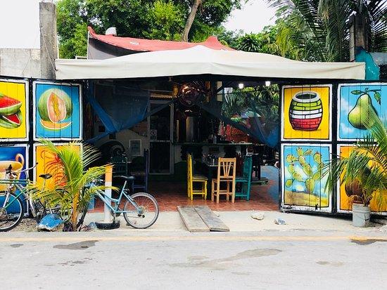 El hongo ภาพถ่าย