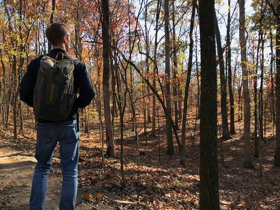 Burns Park: Hiking Trail