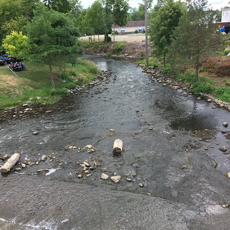 Manchester, MO: The River Raisin from downtown bridge