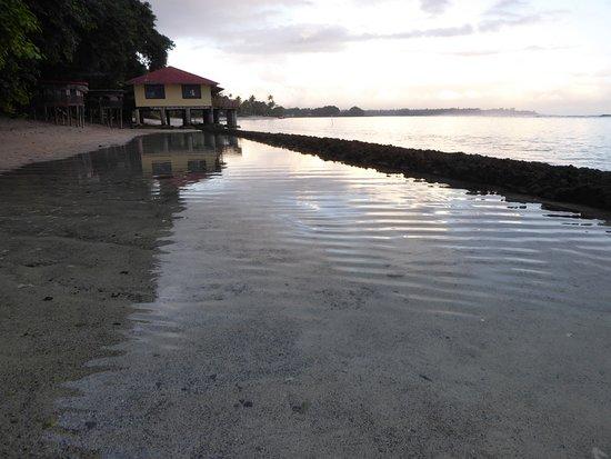 Satuiatua Beach Resort: Fales on the beach