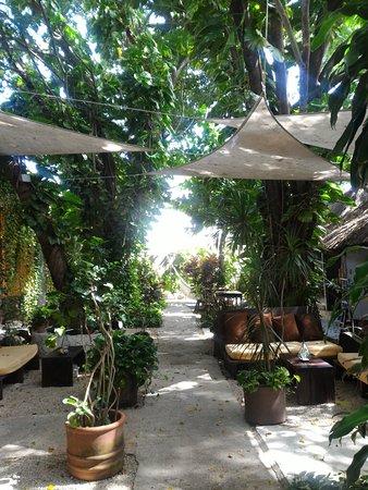 Secret Garden Hotel : P_20180802_095511_large.jpg