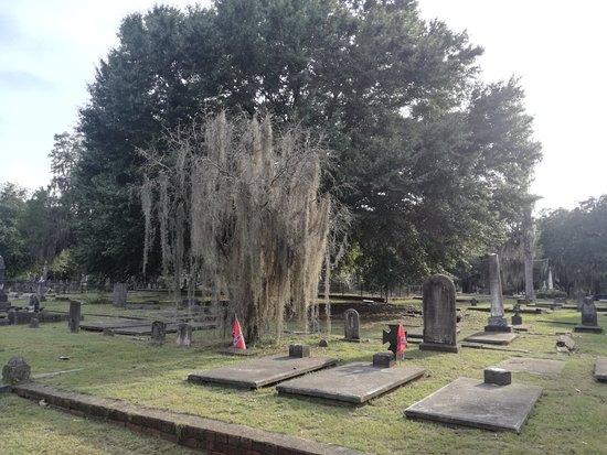 Old Live Oak Cemetery: IMG_20180803_185504_large.jpg