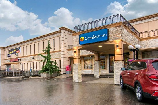 comfort inn toronto airport updated 2018 prices hotel. Black Bedroom Furniture Sets. Home Design Ideas