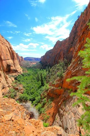 Navajo National Monument: From the trail.