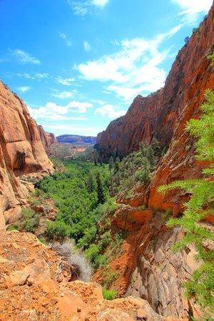 Shonto, AZ: From the trail.