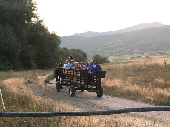 Rocky Mountain Outfitters: Wagon ride