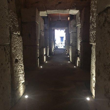 斗兽场地下和古罗马小团游照片