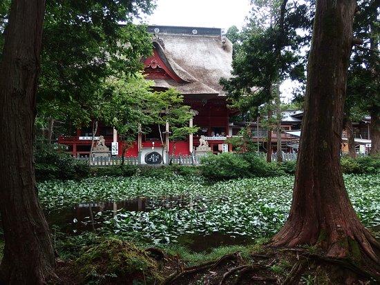 Kagami Pond