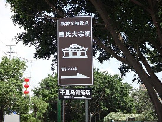 Ceng Shi Da Zong Ci