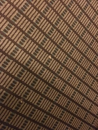 Dirty carpet and bad attitude from front desk.