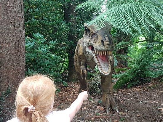 Combe Martin Wildlife and Dinosaur Park: 20180802_145239_large.jpg