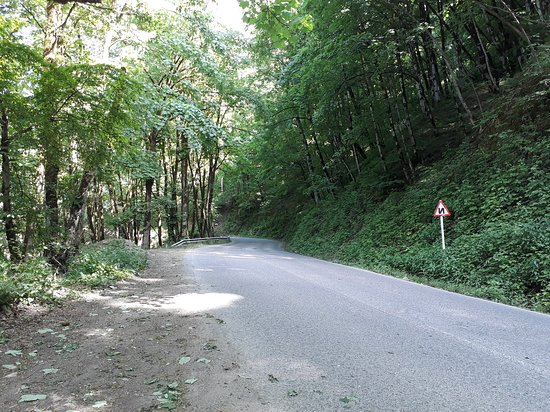 Gilan Province, Irã: Beautiful Road
