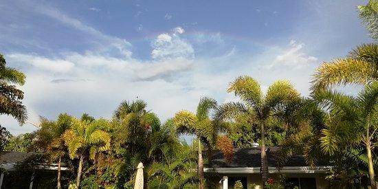 An Island Getaway at Palm Tree Villas Imagem