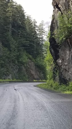 Kitimat-Stikine District, Canada: Hyder, AK