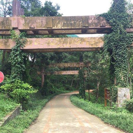 Laoshan Forest Park