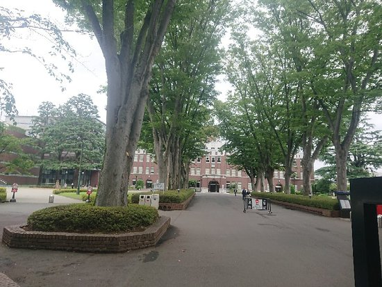 Seikei University