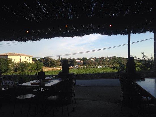 Bidon, Frankrike: Terrasse avec vue sur les vignes